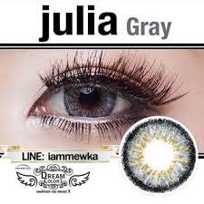 dream color รุ่น julia gray