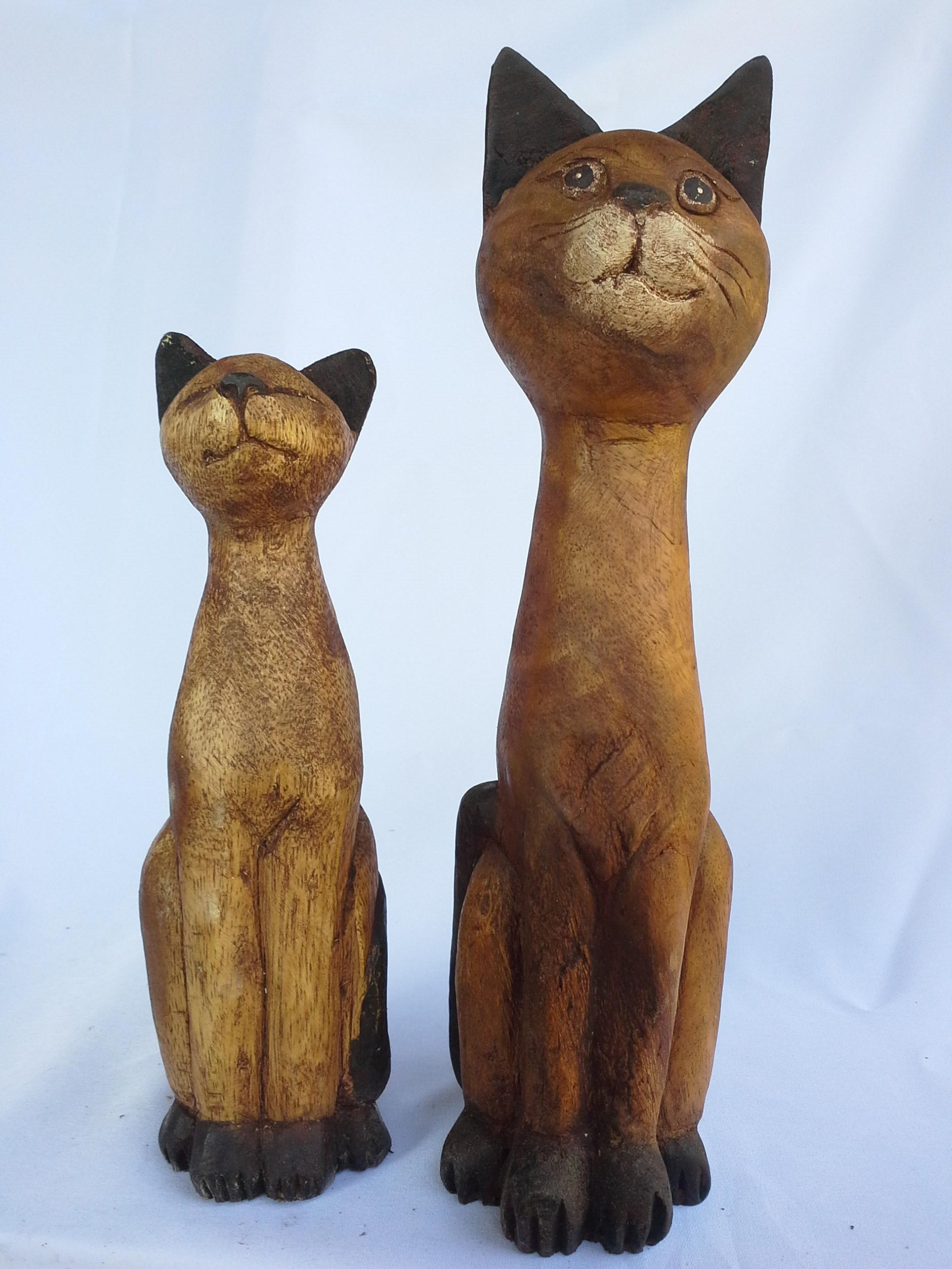 แมวคอยาวคู่